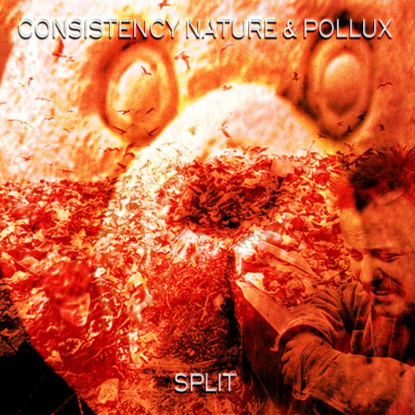 Pollux split